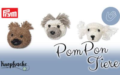 PomPon Tiere